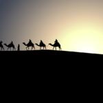 中東ドーハを散策!アラビアンナイトを実体験!?